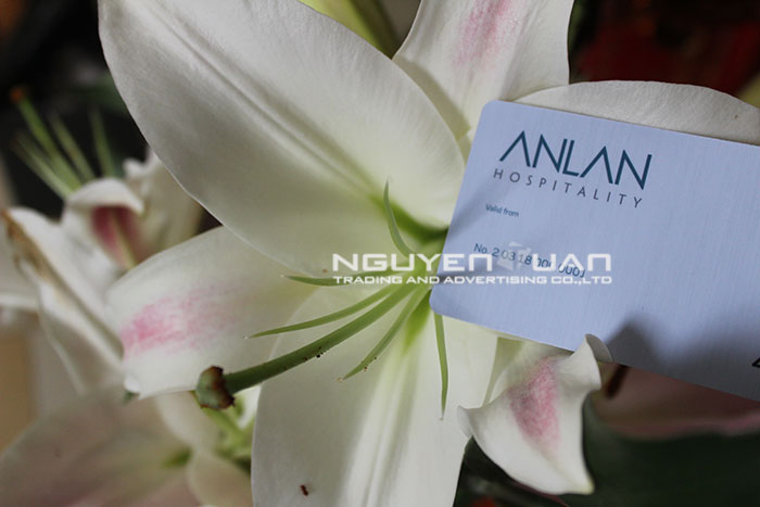 business-card-nguyentuan-18