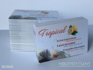 Business Card BC0020